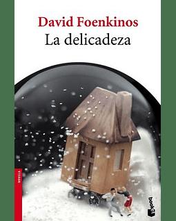 La delicadeza (David Foenkinos)