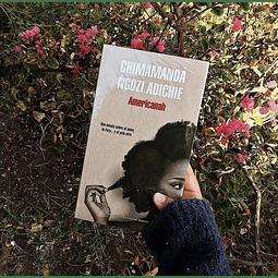 Americanah (Chimamanda Ngozi Adichie)