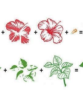 Timbre 3D Flor