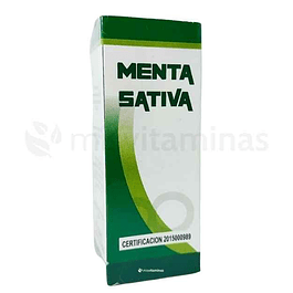Menta Sativa