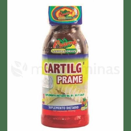 Cartil G  Cartilago de Tiburon Prame