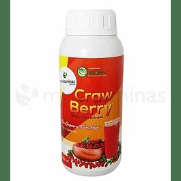 Craw Berry Dronal Bebida de cranberry y licopeno
