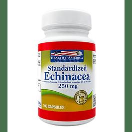 Echinacea 250 mg  100 capsulas Healthy America