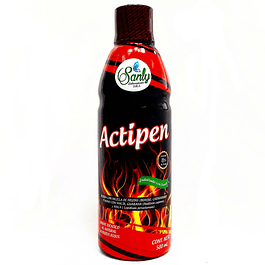Actipen Sanly 500 ml