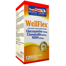 Well Flex 120 Capsulas Healthy America