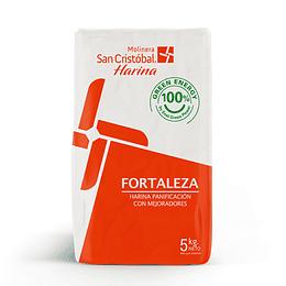 HARINA PANADERA DE FUERZA 5 KG