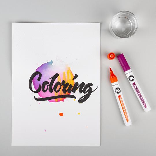 AQUA Color Brush - (36 colores)