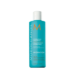 Shampoo Hidratante Moroccanoil 250Ml