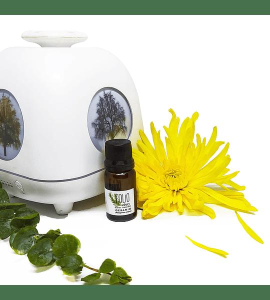 Aceite esencial- Aromaterapia - Geranio