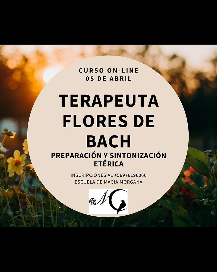 Formación Terapeuta Flores de Bach - Preparación y Sintonía Etérica