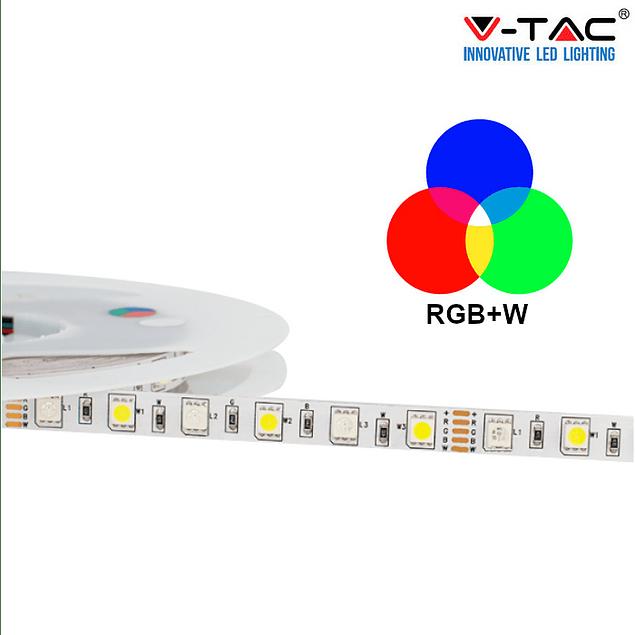 Fita LED 10.8W/m RGB+W SMD5050 60LEDs/m 12V IP20 (5 metros)
