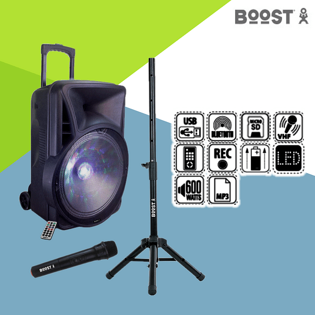 """AMPLIFIED COLUMN 12 """"600W USB / BT / SD SUPPORT / MICRO BOOST"""