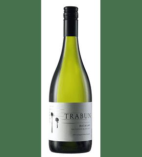Soloist Sauvignon Blanc 2019