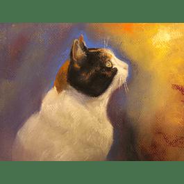Cuadro gato - Título