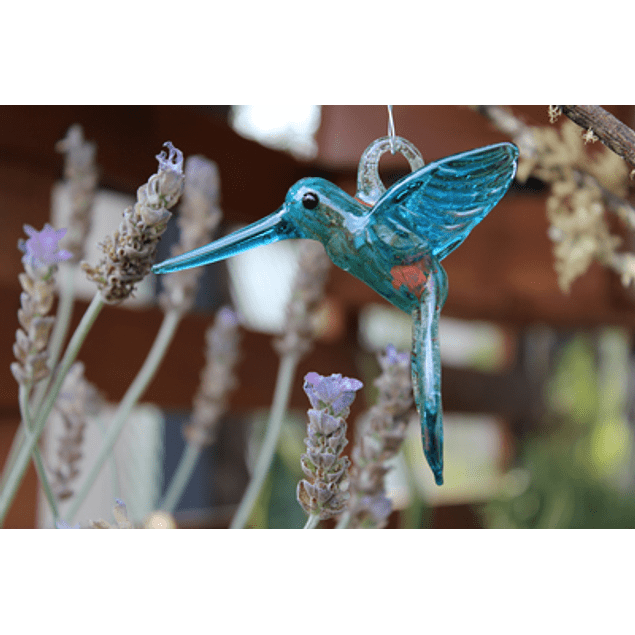 Colibri - Vidrio