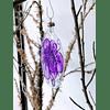 Lata - Sweet Xmas Purple