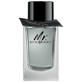 MR. BURBERRY EDT 100 ML TESTER (PROBADOR) - BURBERRY