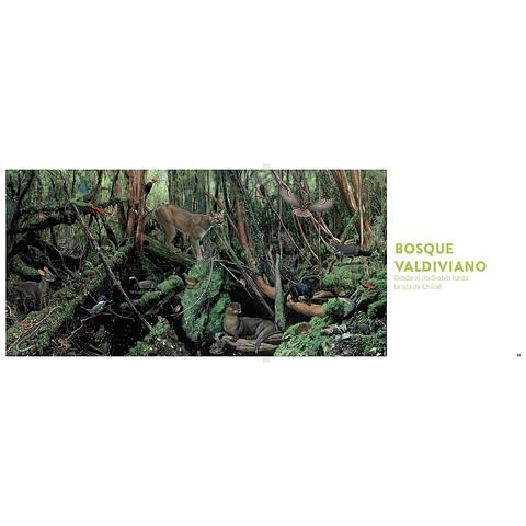 Historia natural de los animales del bosque chileno