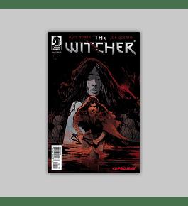 Witcher 5 2014