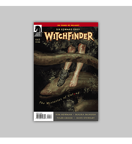 Witchfinder: The Mysteries of Unland 4 2014