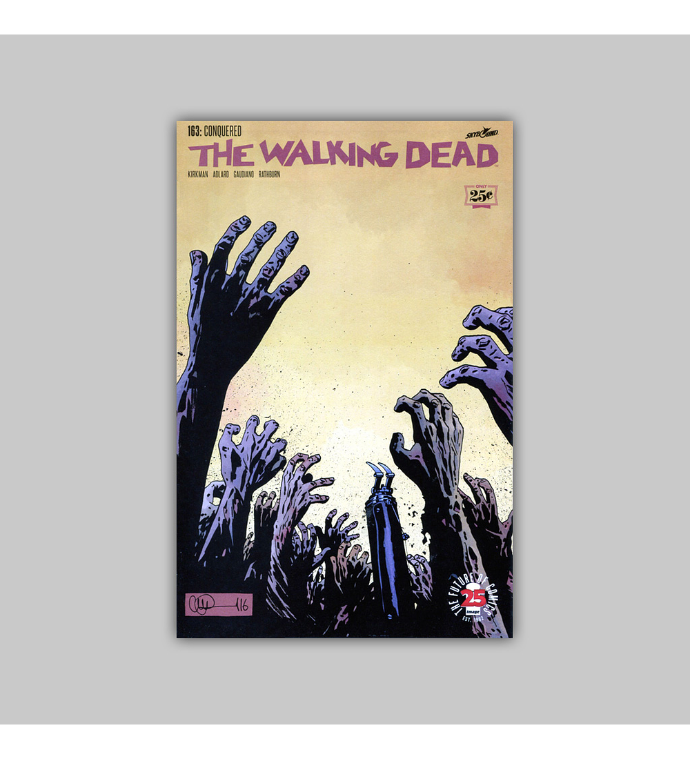 Walking Dead 163 2017