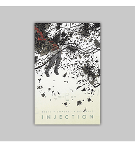 Injection 3 2015