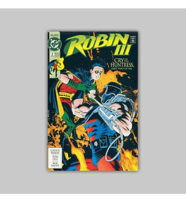 Robin III: Cry of the Huntress 2 1993