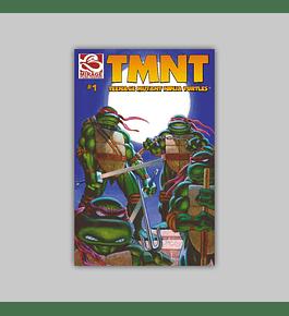 TMNT: Teenage Mutant Ninja Turtles 1 2001