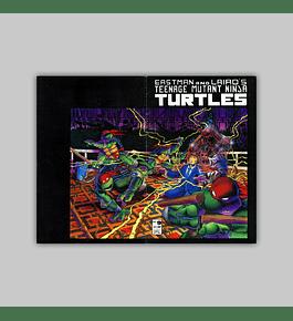 Teenage Mutant Ninja Turtles 9 1986