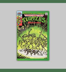 Teenage Mutant Ninja Turtles Adventures 3 1989