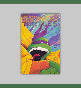 Teenage Mutant Ninja Turtles 22 1989