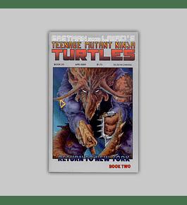Teenage Mutant Ninja Turtles 20 1989