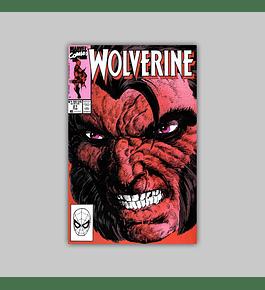 Wolverine 21 1990