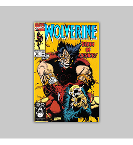Wolverine 38 1991