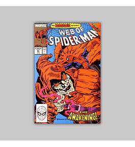 Web of Spider-Man 47 1989