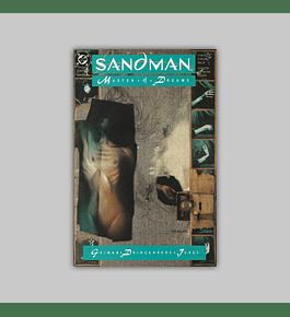The Sandman 7 1989