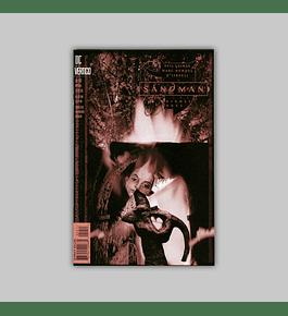The Sandman 59 1994