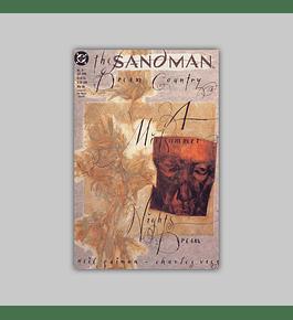 The Sandman 19