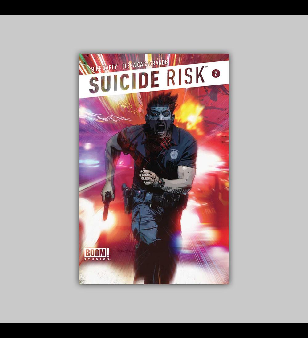 Suicide Risk 2 2013