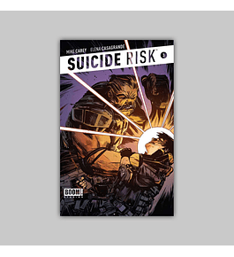 Suicide Risk 3 2013