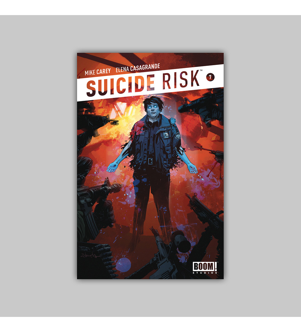 Suicide Risk 7 2013