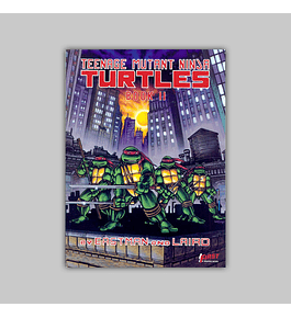 Teenage Mutant Ninja Turtles Vol. 02 1987