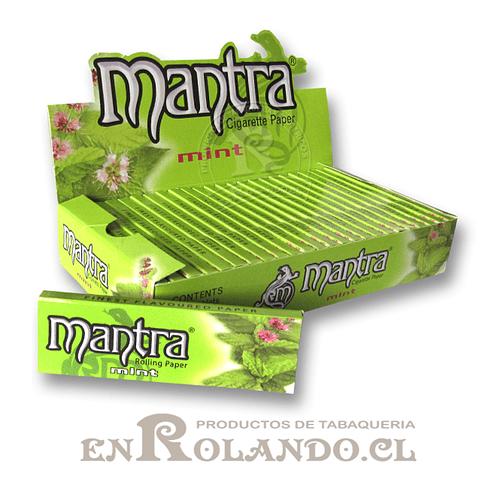 Papelillo Mantra sabor Menta 1 1/4 - Display