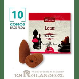 "Caja 10 Conos Cascada ""Lotus"" ($750 x Mayor)"