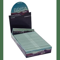 Papelillo Brisa Slim 1 ¼ - Display