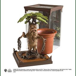 Harry Potter Magical Creatures Statue Mandrake