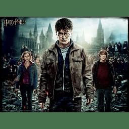 Puzzle Lenticular 3D 500 Peças Harry Potter The Battlefield