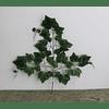Ramo de hojas 1