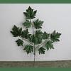 Ramo de hojas 2