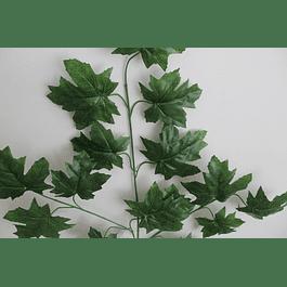 Ramo de hojas 3
